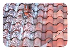 Nettoyant anti mousse pour toiture